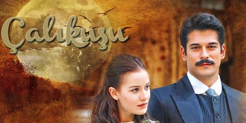 Королек - птичка певчая 2013 смотреть онлайн турецкий сериал